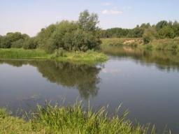 Место первого поселения людей на Кричевщине ( 5-4 тыс. до н.э.)